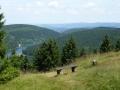 Thüringer Becken  mit Lütsche von der Bergwachthütte (Schloßkanzel)